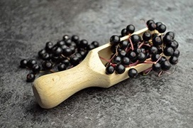 wooden spoon with elderberries