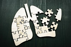 lungs puzzle