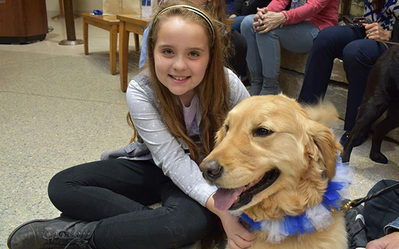 henry ford west bloomfield hospital pet therapy dogs 1