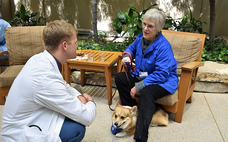 henry ford west bloomfield hospital pet therapy dogs 6