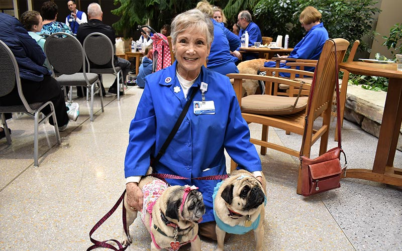 henry ford west bloomfield hospital pet therapy dogs 7